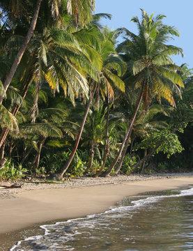 the most beautiful beach in Dominica, Batibou beach