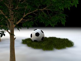 balon y hierba