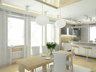 modern interior of kitchenin big house