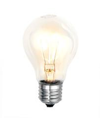 bulb on white background