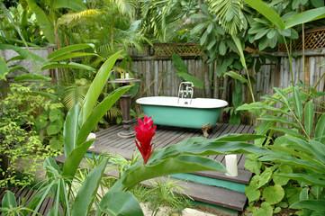 Bath tub in the rainforest