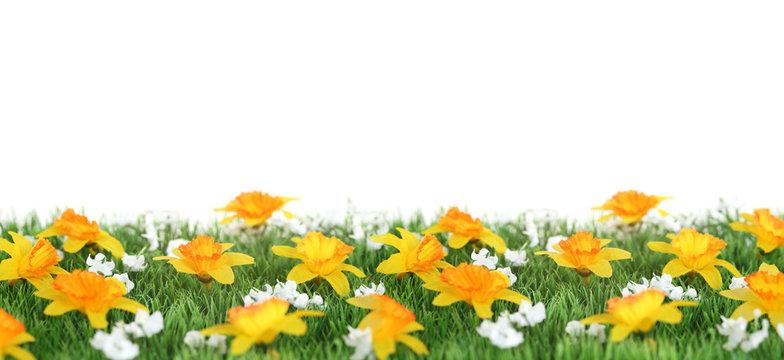 bandeau herbe et fleurs