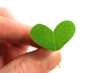 fingers holding clover heart