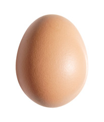 brown chicken egg isolated