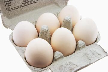White Eggs on Egg Carton