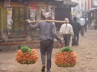 Nepali man carrying carrots