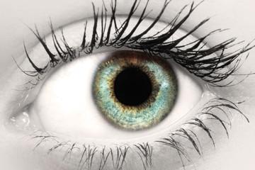 Auge SC