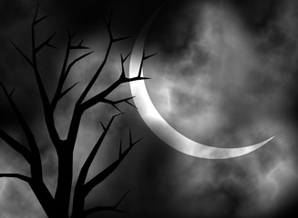 Black and white moonlit night