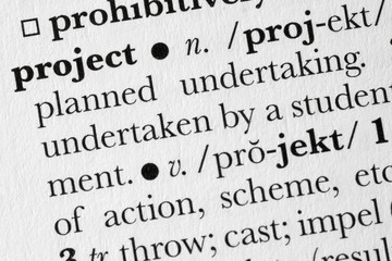 Project word dictionary definition