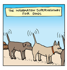 The Information Superhighway for Dogs