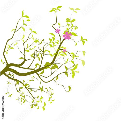 vecteur s rie branche d 39 arbre en t fichier vectoriel libre de droits sur la banque d. Black Bedroom Furniture Sets. Home Design Ideas