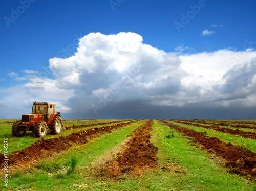 Средняя стоимость участков под сельское хозяйство