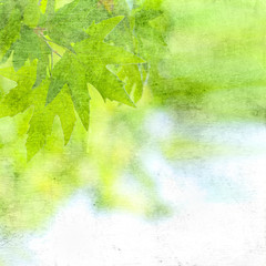 grunge textured background with leaves