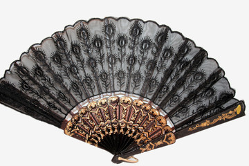 Chinese Hand Fan in White Background