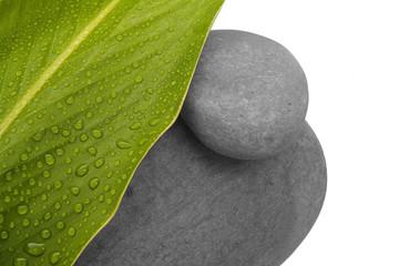 feuille et pierres ZEN