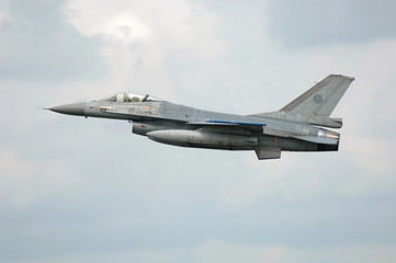 Wall Mural - F-16 Fighting Falcon