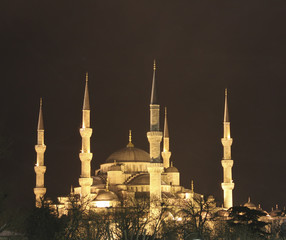 313 Blue Mosque at night in Istanbul Turkey