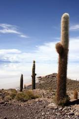 Looking over the desolate Bolivian Salt-flats