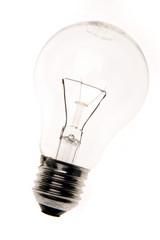 Light-bulb on white