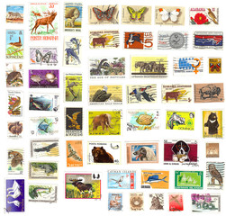 collection of vintage animal stamps