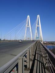 cable-braced bridge and blue sky