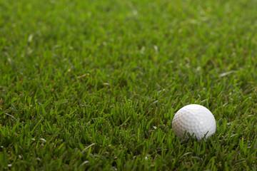 one golf ball
