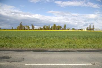 route départementale