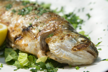 Delicious grilled trout