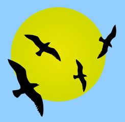 Pájaros en el cielo