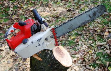 Dusty chainsaw.