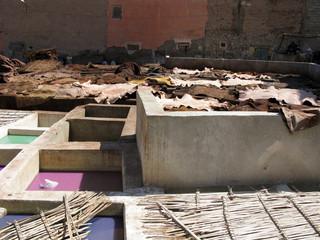 Marrakech - tanneurs