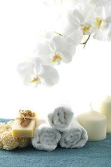 spa item on white background