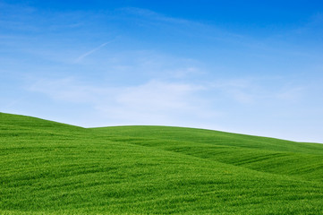 Colline verdi. Rolling green hills and blue sky