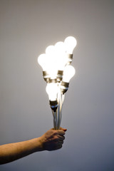Hand holding multiple lightbulbs