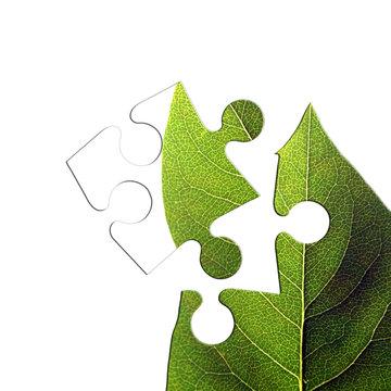 green leaf jigsaw