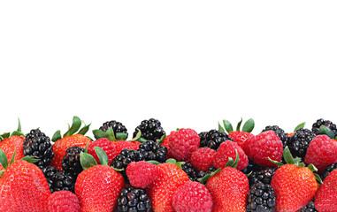 Berries border