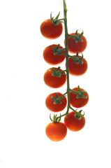 Cherry tomatoes bunch