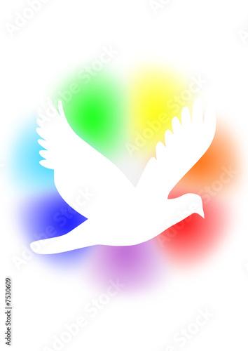 """Ben noto colomba della pace"""" Immagini e vettoriali Royalty Free su Fotolia  RT53"""