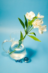 White flowers of alstroemeria in a transparent jug.