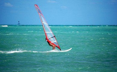 Young Woman Windsurfer