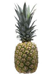 Ananas ganz isoliert
