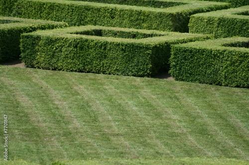 Jardin fran ais pelouse versailles photo libre de for Versailles jardin gratuit