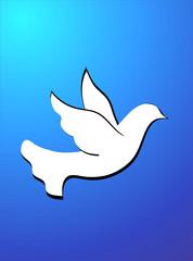 White bird on a dark blue background