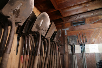 Shovels inside garden shed