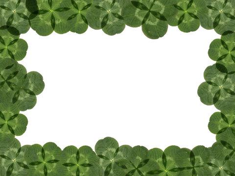 Frame made of four-leaf clover