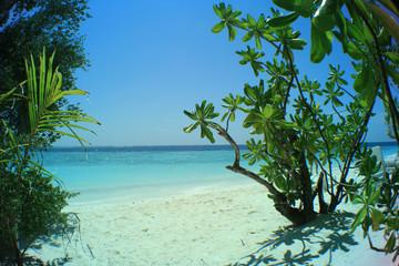 Maledivischer Strand