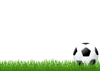 Pelouse et ballon de football (pied de page)