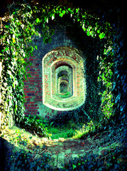 Old brick archways covered in natural foliage.