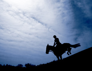 Silhouette of a horseman