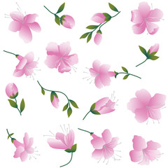 Pink flowers on white  background. Seamless figure.